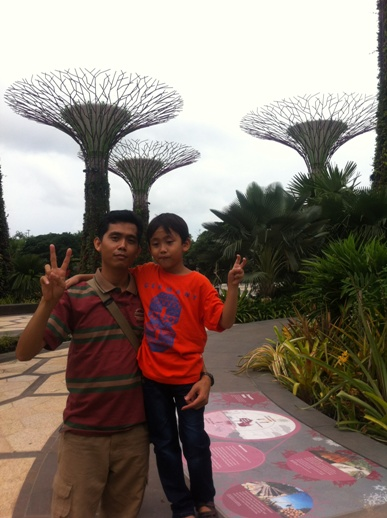 pohon menara garden by the bay