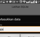 InputQuery  android xe8