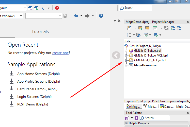 jendela project manager di delphi 10.2 tokyo community edition